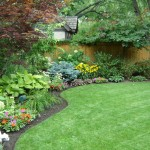 lawn maintenace - services page