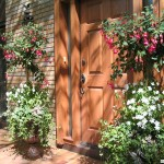 summer urn - services page